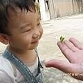 螳螂初體驗-有趣