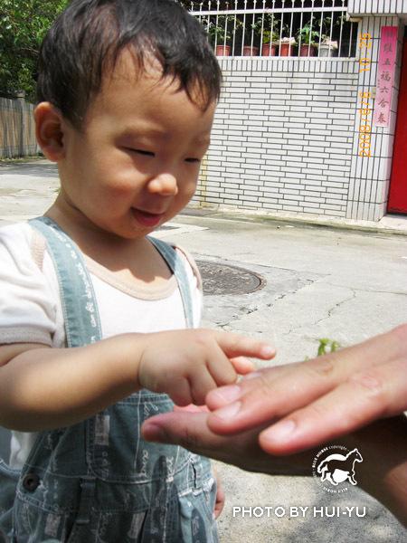 螳螂初體驗-可以摸摸嗎