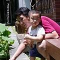 【6月29日星期天】北藝大的荷花池畔