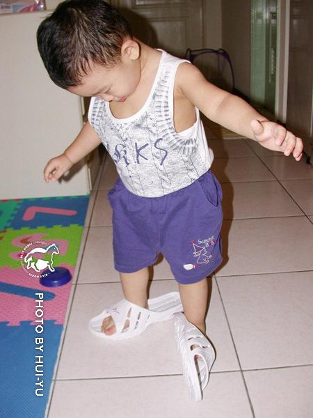看到媽媽的新拖鞋,宋小駿也要穿穿看。