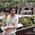 與大象合照