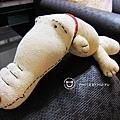手作-襪子娃娃-鱷魚小金02.JPG