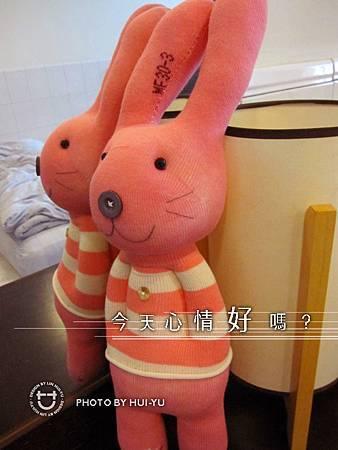 手作-襪子娃娃No45「紛紅條紋衣免」1.jpg