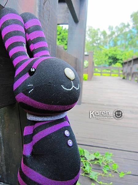 黑芋條紋兔