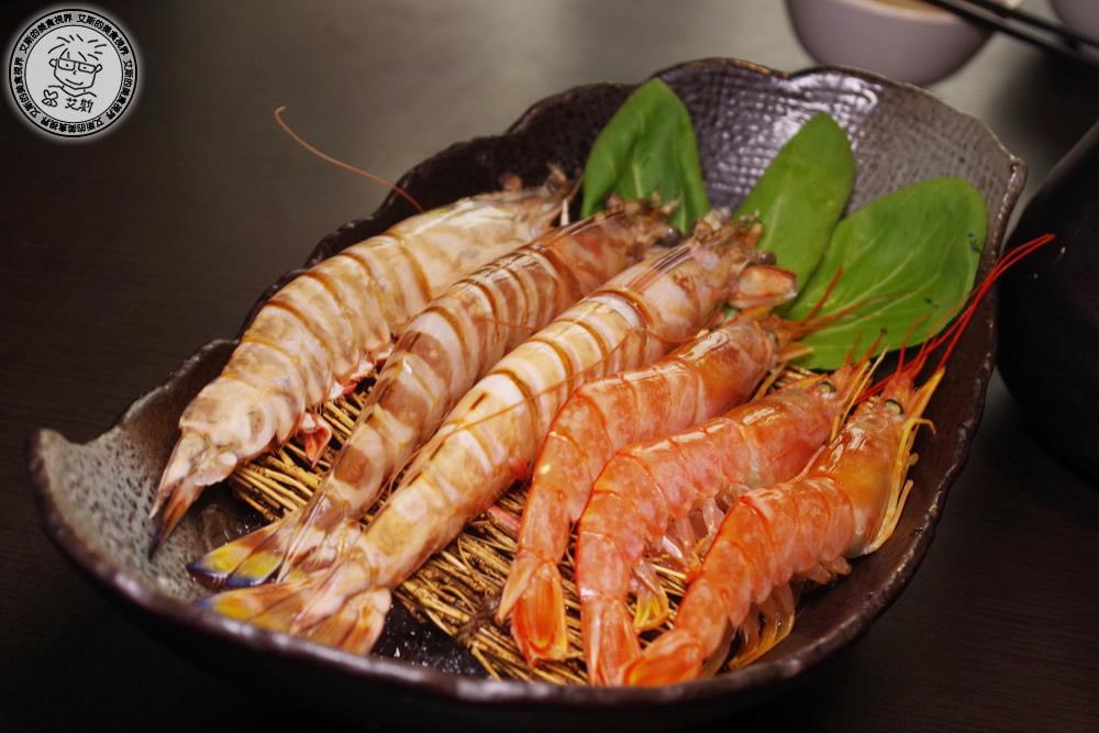 8明蝦+天使紅蝦1.JPG