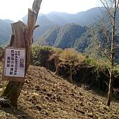 小米種植區