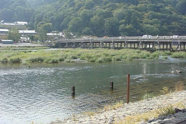 大堰川(桂川)畔