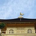 金閣寺頂的金鳳凰