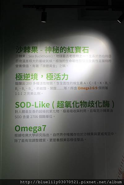 IMG_4900.JPG