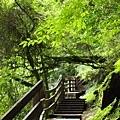 101.07.28 拉拉山森林遊樂區106