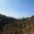 2014花湖美地42 (2).JPG