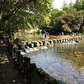 1040403龜山朝日 (118).jpg