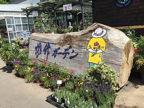 北海道 (87).JPG