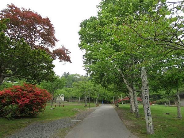 北海道 (194).JPG