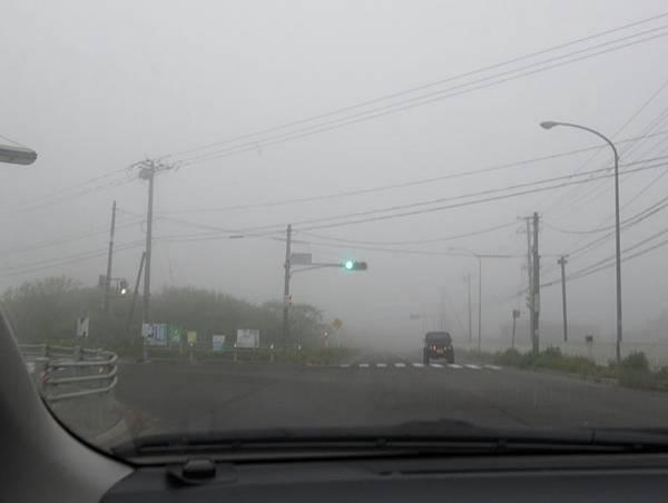 北海道 (242).JPG