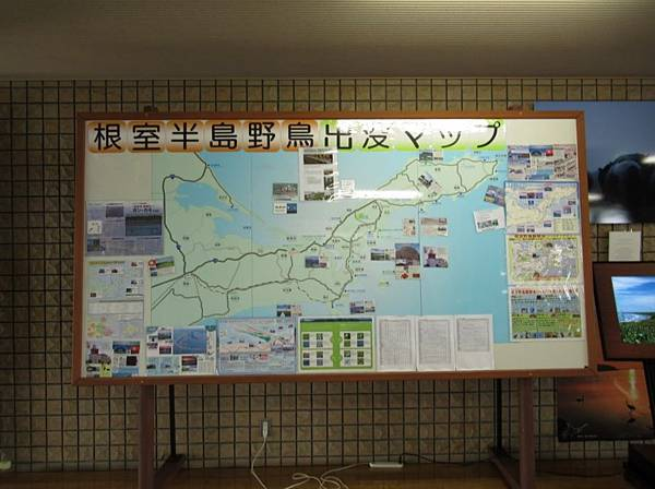 北海道 (276).JPG