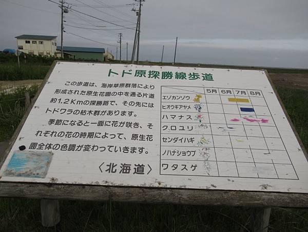 北海道 (316).JPG