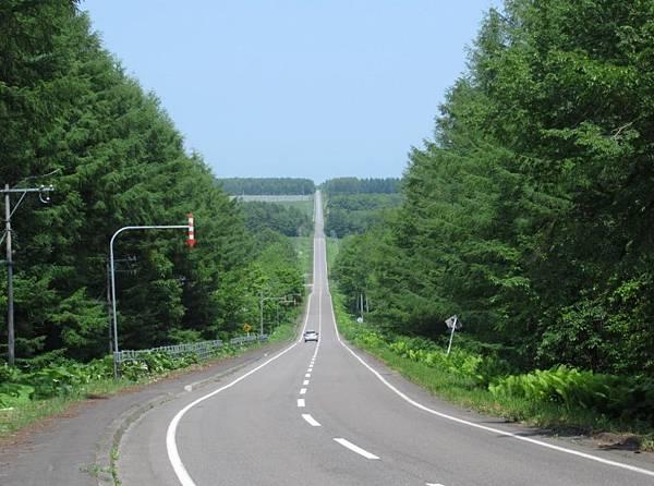 北海道 (366).JPG