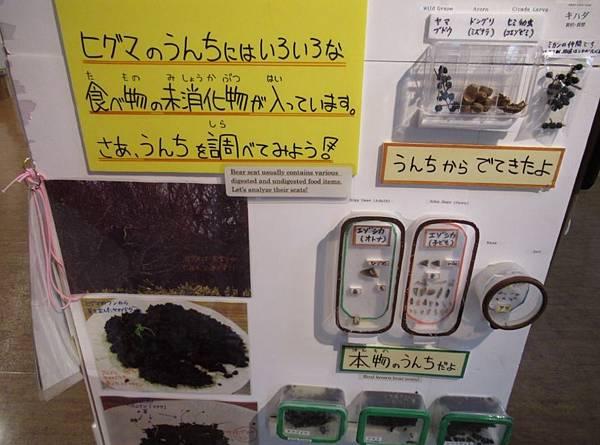 北海道 (488).JPG