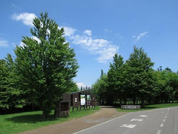 北海道 (598).JPG