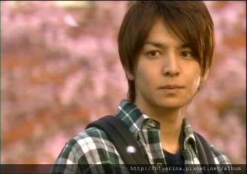 2008 蜂蜜幸運草.jpg