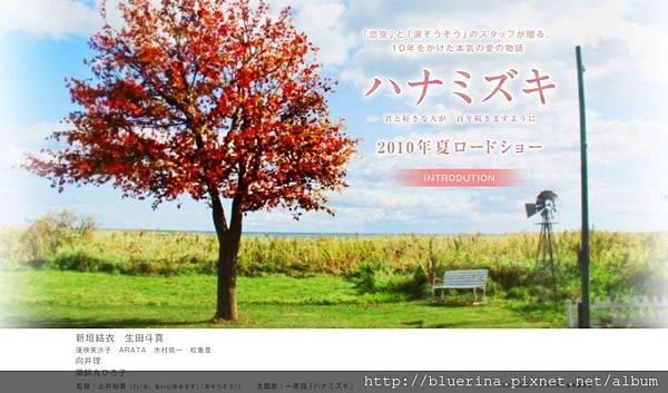 2011 花水木.jpg