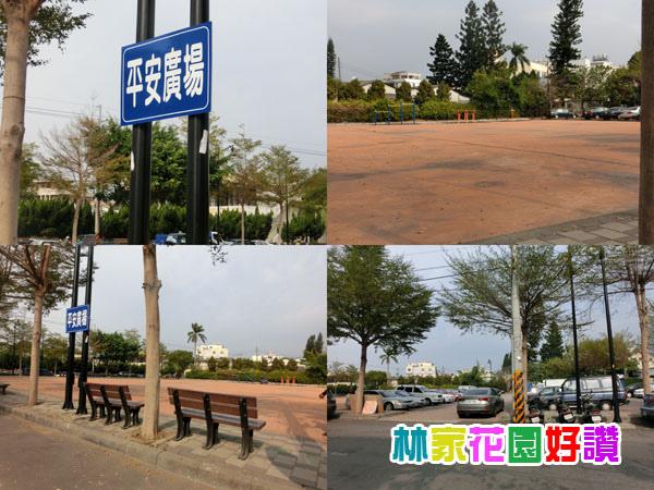 CIMG5921-tile.jpg