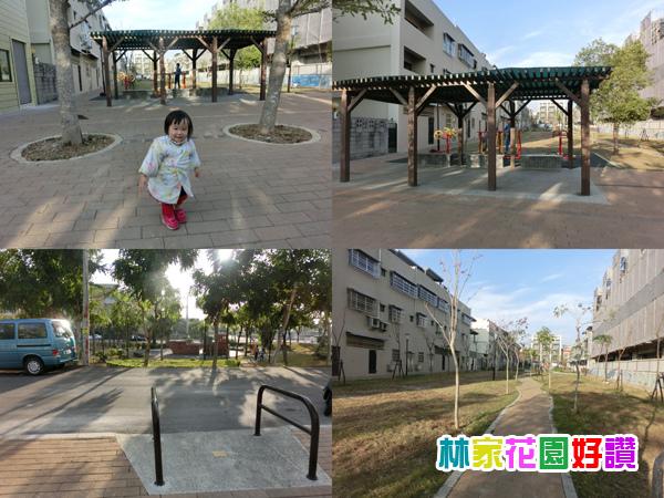 CIMG6138-tile.jpg