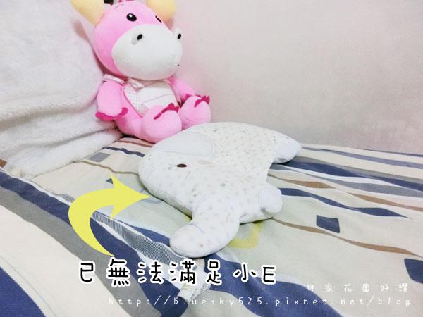 枕003.JPG