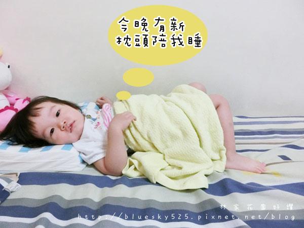 枕017.JPG