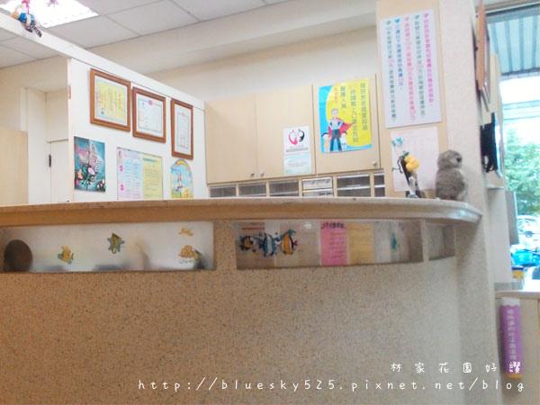 CIMG7686.jpg