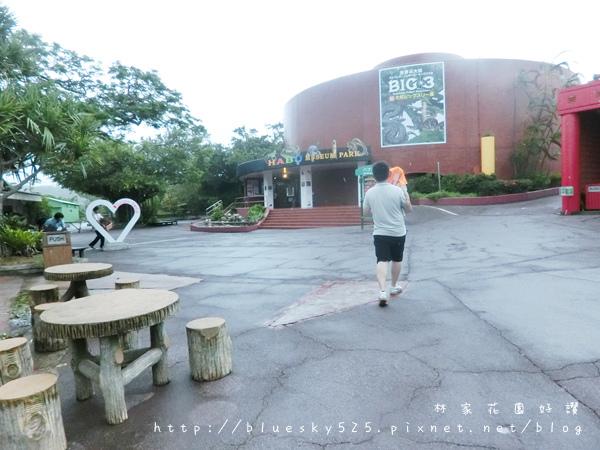 泉048.JPG