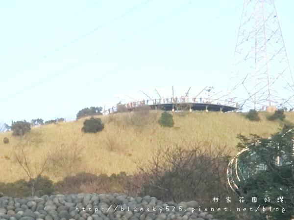 山041.jpg