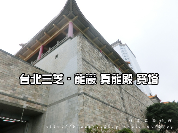 龍001.JPG