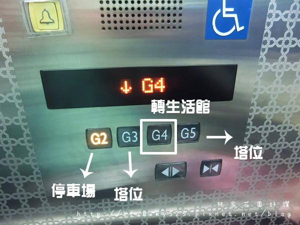 龍006.JPG
