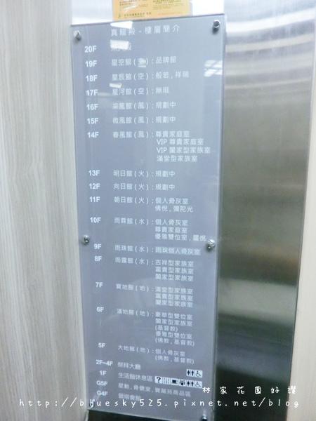 龍031.JPG