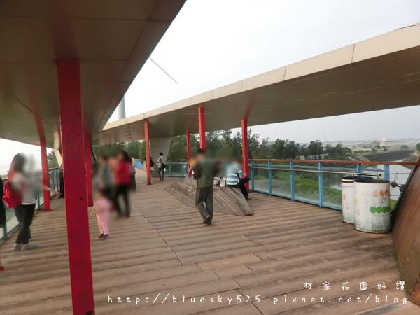龍012.JPG