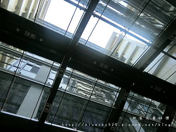 CIMG3709.JPG