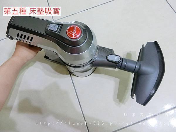 CIMG5424.JPG