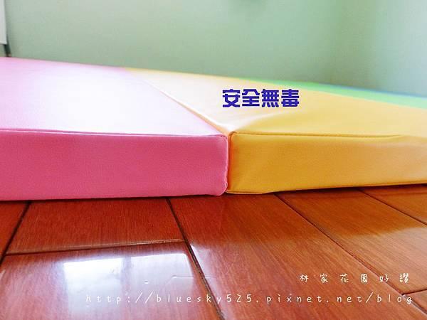 CIMG8835.JPG