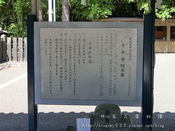 CIMG3663.JPG