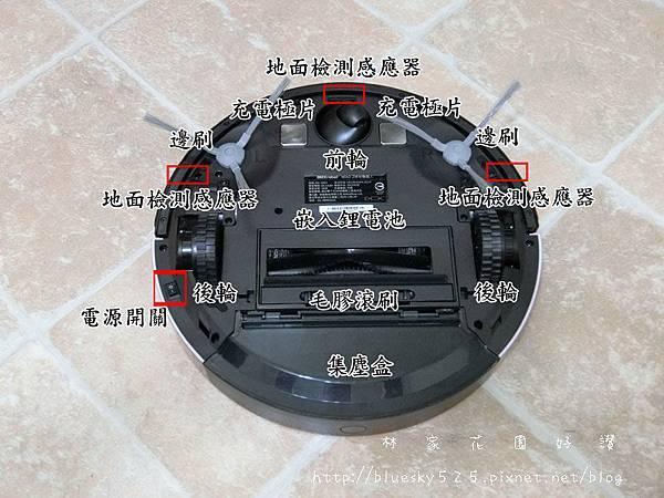 CIMG4801.JPG