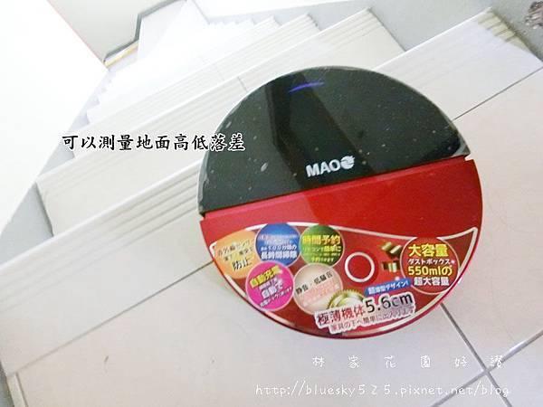 CIMG4865.JPG