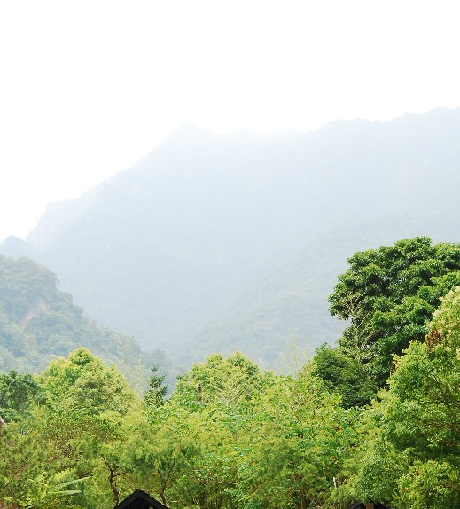 桃園仙谷1