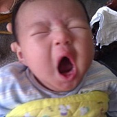 baby1-打哈欠.jpg
