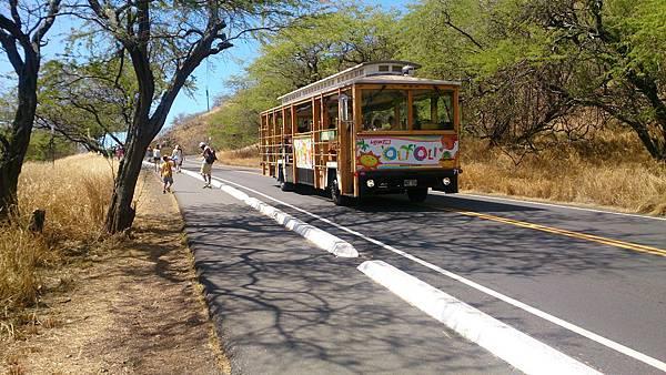 11復古旅遊車Waikiki Trolley也是路上的風景之一