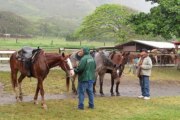 14如果天氣好就能體驗在侏儸紀公園拍攝過的牧場騎馬
