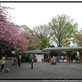 東京《新宿御苑》2.jpg