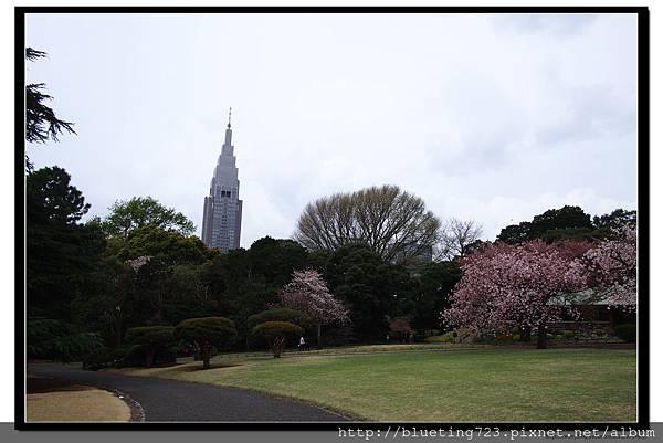 東京《新宿御苑》9.jpg