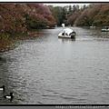 東京《吉祥寺 井之頭恩賜公園》3.jpg